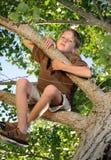 Emissioni dell'albero Fotografia Stock