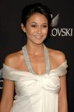 Emmanuelle Chriqui Royalty Free Stock Photos