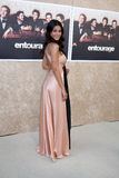 Emmanuelle Chriqui Stock Photo