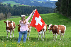 Emmental, Switzerland. Girl with the Swiss flag against cows. Emmental, Switzerland royalty free stock image
