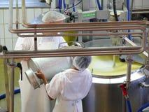 Emmenthal, Zwitserland 08/03/2009 Een arbeider plaatste kaaswelp in plastiek royalty-vrije stock foto