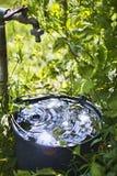 Emmer met water in de tuin stock foto's