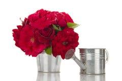 Emmer van rode rozen naast het water geven Stock Fotografie