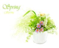Emmer van verse de lente wilde bloemen Royalty-vrije Stock Foto's