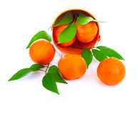 Emmer van verse mandarins Stock Foto's