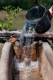 Emmer water wordt gebruikt om een trog voor koeien te vullen die Stock Fotografie