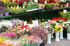 Emmers van bloemen royalty-vrije stock afbeeldingen