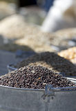 Emmers zaden. Stock Afbeelding