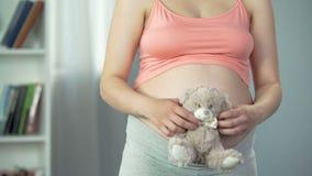 Emoções macias da mulher gravida que abraçam o urso de peluche macio, antecipação do bebê vídeos de arquivo