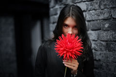 Emo girl. With red flower stock photography