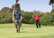 Emoción del golf de la victoria y agonía de la derrota fotografía de archivo libre de regalías