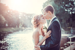 Emocional wedding kiss Stock Photography
