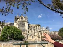 Emociones con Notre Dame De Paris después del accidente de fuego foto de archivo libre de regalías