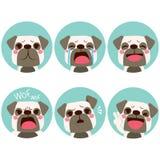 Emoji Dog Expressions Stock Image