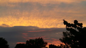 Emorragie del cielo Fotografie Stock Libere da Diritti