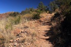 Emory Peak Trail Royalty-vrije Stock Afbeeldingen