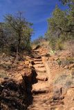 Emory Peak Trail Royalty-vrije Stock Afbeelding