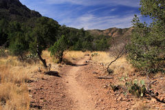 Emory Peak Trail. The Difficult but Scenic Emory Peak Trail in the Chisos Mountains of Big Bend National Park in the State of Texas Stock Photo