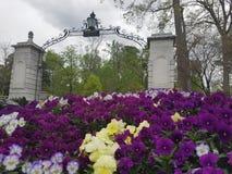 Emory University Fotografía de archivo libre de regalías
