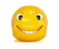 Emoticon with smile Stock Images