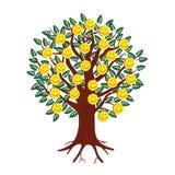 Emoticon sorridenti sotto forma di frutti su un albero Fotografia Stock