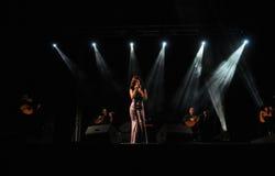 _Emotion Woman_Singer_Guitars_Music_ Live Concert Lizenzfreie Stockbilder