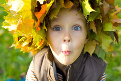 Emotional boy in a wreath from autumn leaves Royalty Free Stock Photography