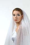 Emotional bride Stock Image