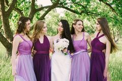 Emotional bride and bridesmaids are talking and smiling. caucasian girls in purple dresses having fun in the park stock images