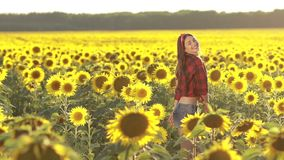Emotional charming girl jumping in sunflower field stock video