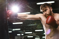 Emotional concentrated young strong sports man boxer. Image of emotional concentrated young strong sports man boxer make exercises in gym and looking aside stock photography