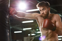 Emotional concentrated young strong sports man boxer. Photo of emotional young strong sports man boxer make exercises in gym and looking aside royalty free stock photos