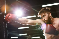 Emotional concentrated young strong sports man boxer. Photo of emotional concentrated young strong sports man boxer make exercises in gym and looking aside royalty free stock photo