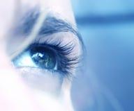 Emotional eye. Close-up shot of a blue eye Stock Image