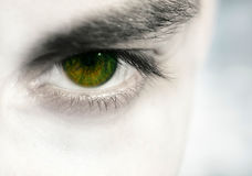 Emotional eye. Man eye...my eye Royalty Free Stock Image