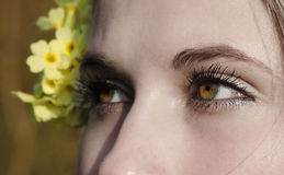 Emotional eyes stock photography