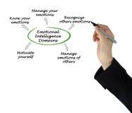 Emotional Intelligence Domains. Diagram of Emotional Intelligence Domains Royalty Free Stock Image