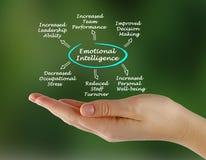 Emotional intelligence. Presenting Diagram of Emotional intelligence Stock Images