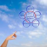 Emotional intelligence. Presenting diagram of Emotional intelligence Royalty Free Stock Image