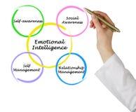 Emotional Intelligence. Presenting Diagram of Emotional Intelligence Royalty Free Stock Photo