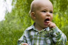 Emotional kid in grass Royalty Free Stock Photos