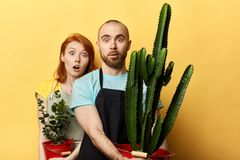 Emotional scared man and woman with surprised faces stock images