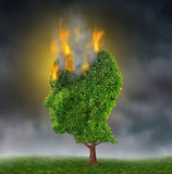 Emotional Stress. And suffering with a tree in the shape of a human head burning in flames on a night sky as a medical brain concept representing the extreme Stock Photo