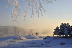 Emotional winter. In February (the Arctic Circle, Northern Sweden Royalty Free Stock Image
