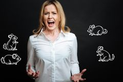 Emotional woman screaming while being afraid of mice. Scary mice. Young beautiful emotional woman screaming and looking scared while noticing mice and being Royalty Free Stock Images