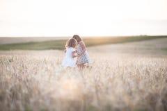 Emotionele zusters op tarwegebied bij zonsondergang Stock Afbeelding
