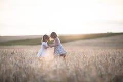 Emotionele zusters op tarwegebied bij zonsondergang Stock Foto