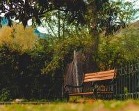 Emotionell bänk för landskapfotografinatur royaltyfri bild