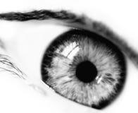 emotionellt öga för bw Arkivfoton