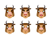 Emotions cow. Set expressions avatar bull. Good and evil.  Royalty Free Stock Photo